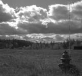 Rolleiflex, Ilford Delta 400
